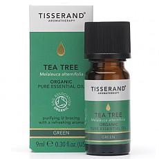 티트리 유기농 에센셜오일 (Tea-Tree)